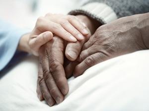 Palliative Care 101 Banner